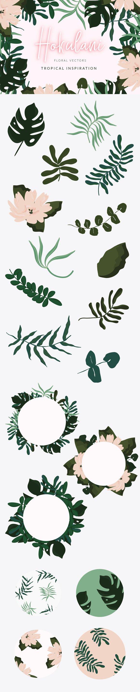 Hokulani Tropical Floral Vectors