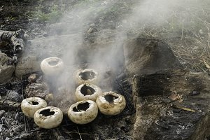 Mushrooms grilled on a coals in natu