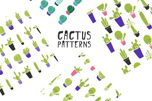Cactus patterns