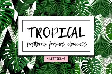 Tropical patterns, elements + Bonus!