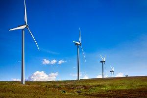 Windmills on green meadow. Spain