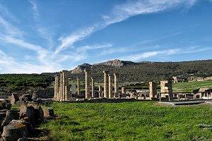 Baelo Clauida Roman Ruins. Bolonia