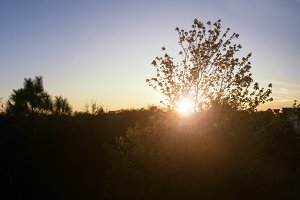 A beautiful sunset in rural area