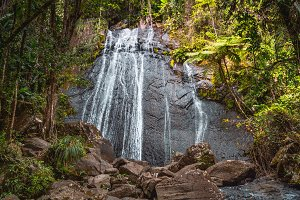 El Yunque National Forest Waterfall