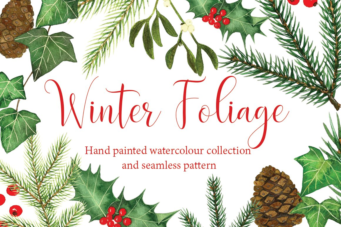 Watercolour Winter Foliage Illustrations