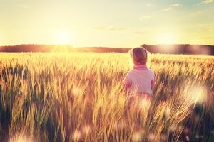 Kid stands in wheat field