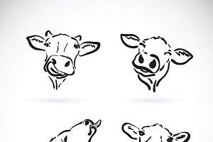 Vector of cow head. Farm Animal.