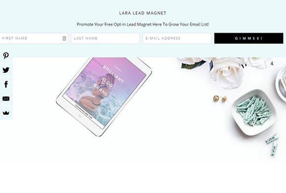 Lead Magnet Landing Page Theme