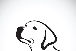 Vector of a dog head. (Labrador)