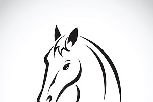 Vector of a horse head.