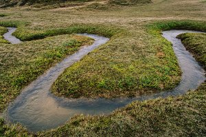 Small Stream flowing in Curves