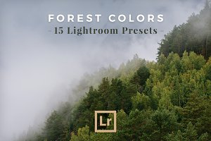 Lightroom Presets Forest Landscapes