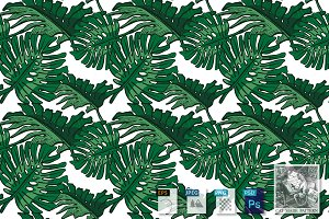 Pattern with Monstera leaves