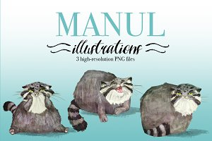 Manul illustrations set
