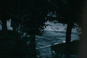evening after rain