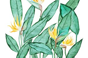 Hand-drawn aquarelle painting of green leaves with small yellow flowers against white background