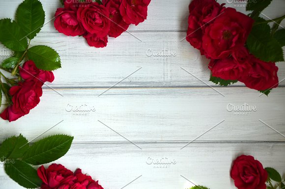Bright Red Garden Roses On White Wooden Background Fresh Summer Floral Background With Copy Space