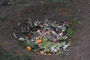 Pit Composting