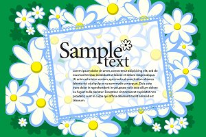 Chamomile floral background