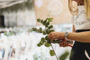 Florist Cutting Foliage