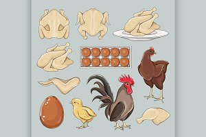 Chicken icons set