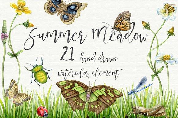Summer Meadow Watercolor Clipart