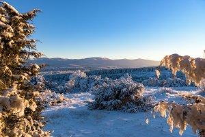 View through branches on mountain
