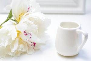 Tender white peony with creamer
