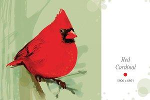 Red cardinal, art