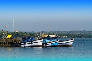 Horizontal vivid Indian ships and boats transportation backgroun