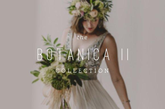 Botanica II ProPhoto 6 Collection
