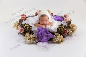 Newborn Digital Backdrop Rose Nest