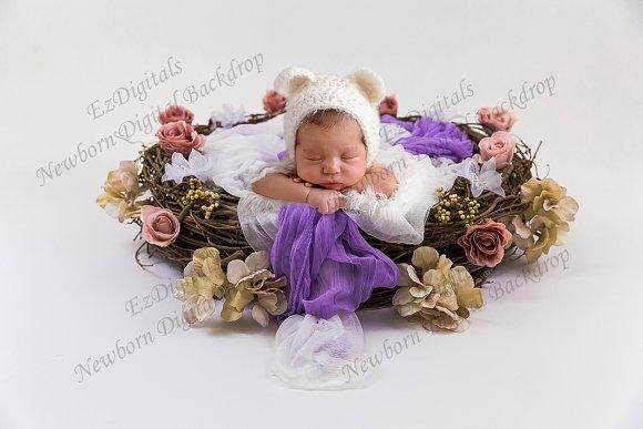 Newborn Digital Backdrop Rose Nest