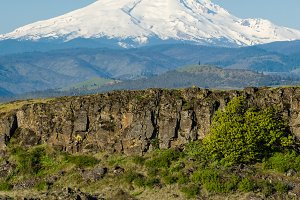 Volcanic cliffs of the Columbia Gorge