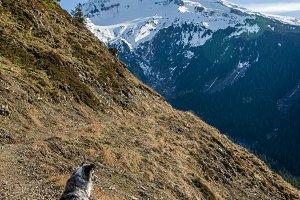 Trail leading through the pass near Mt Hood