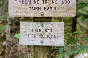 Sign post for trail 600 Cairn Basin