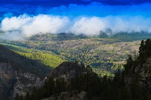 Horizontal vivid cloudscape in mountain forest background