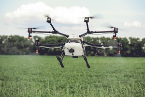 Agriculture drone spraying water or pesticides to grow over green field.