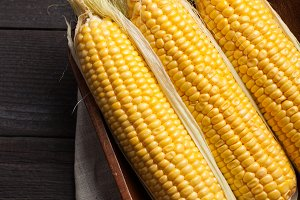 Fresh corn on cobs on wooden table, closeup, top view. Dark background