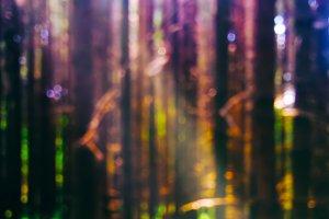 Vertical light leak in forest bokeh background