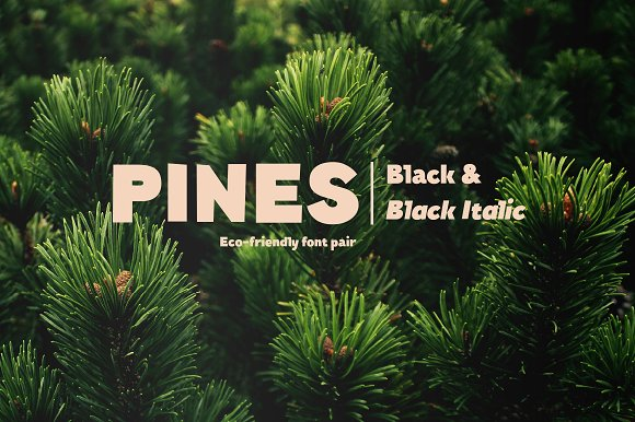 Pines Black Pines Black Italic