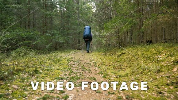 Tourist woman with backpack enjoying view to rainforest - flying camera shot in Graphics