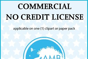 Commercial no credit license