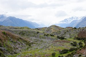 New Zealand Landscape 2