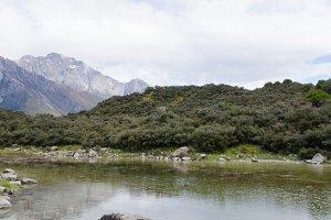 New Zealand Landscape 4