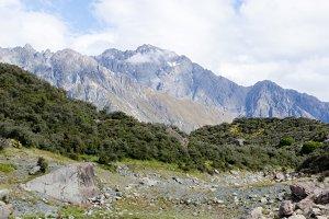 New Zealand Landscape 5