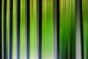 Green vertical stripes