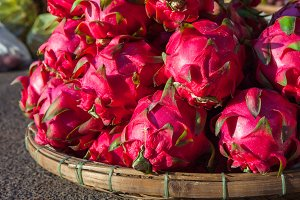 Dragon fruits, Vietnam
