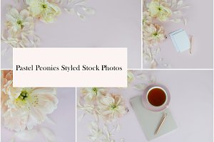 Pastel Peonies Styled Stock Photos