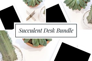 Stock Bundle | iPad, cactus, minimal
